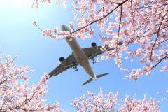 日本航空 ストップオーバー里旅
