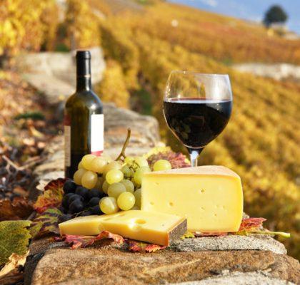 フランス・ワインの旅